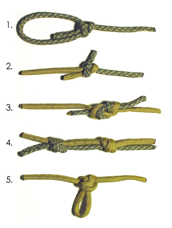 Five knots you should know.